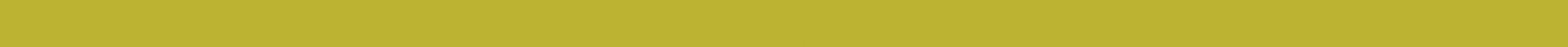border-yellow